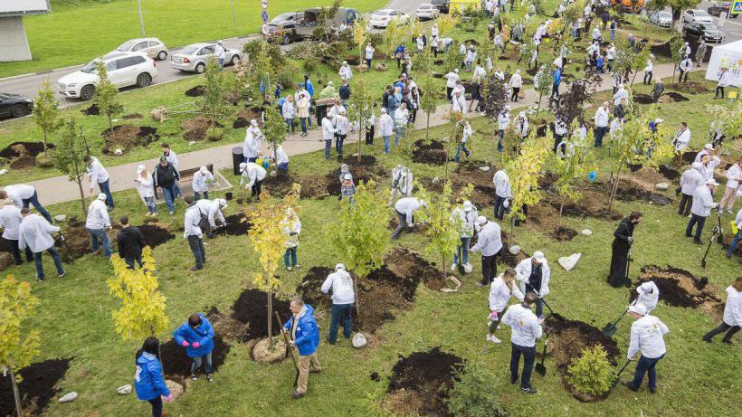 Участники акции «Наш лес. Посади свое дерево» в Химках