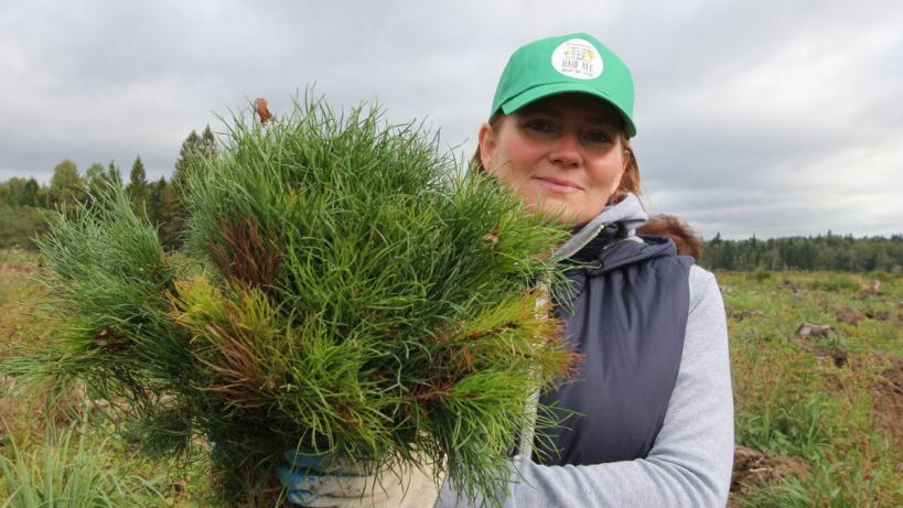 Акция «Наш лес. Посади свое дерево» в Рузском округе