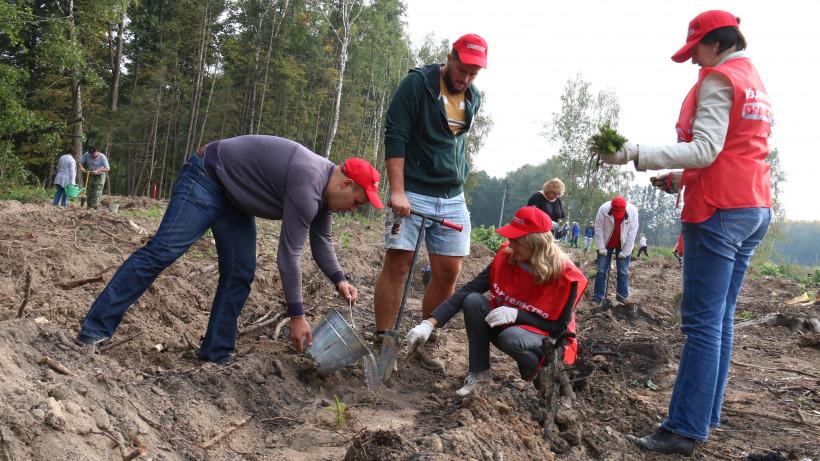 Акция «Наш лес. Посади свое дерево» в Подольском районе