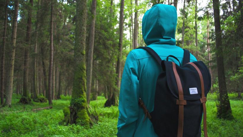 Путешественник в лесу