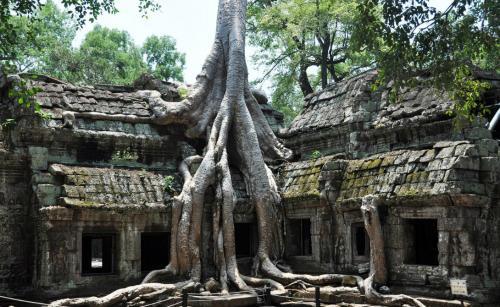 Кхмерская империя Кхмеры построили свою великую империю в 9 веке нашей эры. Территория современной Камбоджи стала колыбелью цивилизации, наводившей ужас на юг Азии.