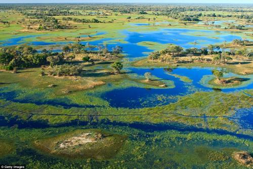 Сафари-туры от Wilderness Safaris в Ботсване. Туроператору Wilderness Safaris принадлежат 19 живописных кемпингов в дельте Окаванго, до которых можно добраться только на небольшом частном самолёте. Лучшее время для посещения: в сезон наводнений в июле и августе.