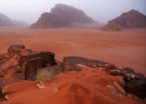 Все это о пустыне Вади Рам, расположенной в Иордании, в 60 километрах от Акабы и Эйлата. Она часто становится местом для съемок фантастических фильмов, а все благодаря своим уникальным пейзажам. Огромные рельефные скалы, ярко-желтый песок, который на закате становится красным – Вади Рам уже давно стал неотъемлемой частью сафари-туризма. А увековеченные в кинолентах потрясающие виды лишь добавляют этому месту популярности.