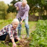 Развенчиваем миф о пользе тяжелого физического труда