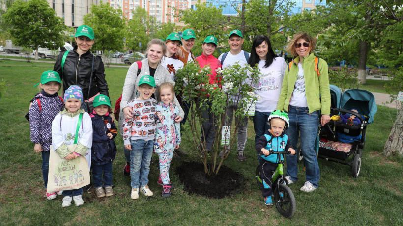 Более 18,7 тыс. человек приняли участие в акции «Лес Победы» в Одинцовском городском округе