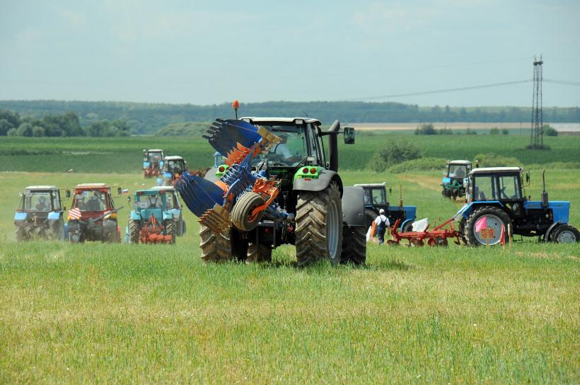 Почти 450 млн рублей выделят власти Подмосковья на поддержку аграриев в 2019 году