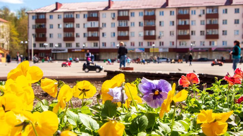 Свыше 1,2 тыс. цветов высадят на самой большой клумбе Солнечногорска