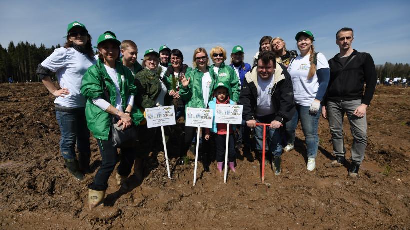 Выдающиеся россияне пригласили жителей Московской области на акцию «Лес Победы»