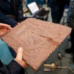 Выставка «Каменная летопись Притомья: прикоснись руками»
