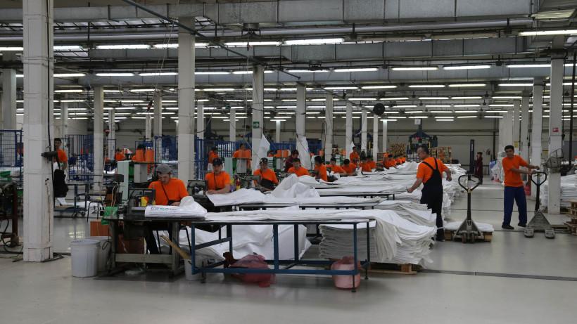 17,5 тыс. человек нашли работу в Подмосковье в 2019 году