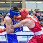 Боксеры из Московской области завоевали два золота и серебро международных соревнований
