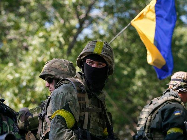 «Картина салом»: на Украине созвали совещание силовиков из-за видео с «фантазией» на YouTube