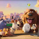 Кинопоказ «Тайная жизнь домашних животных»
