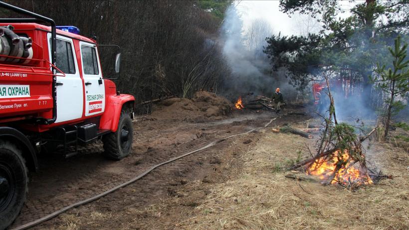 Крупный лесной пожар произошел в Луховицах