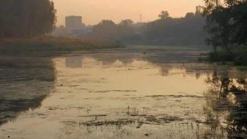 Минэкологии оштрафовало двух нарушителей за загрязнение рек в Одинцовском округе