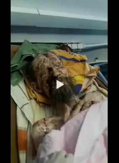 Мировые СМИ поверили в фейк о восставшем из могилы жителе Сочи