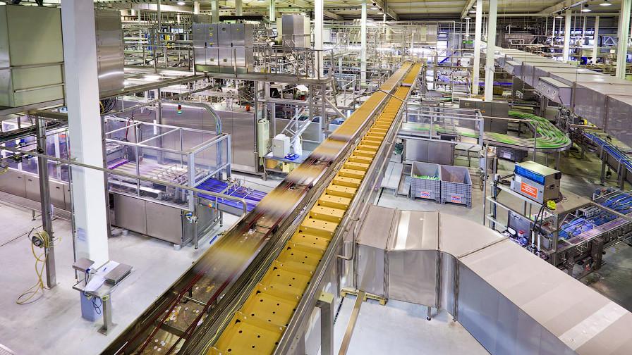 Немецкий производитель йогуртов и десертов модернизует производство в Раменском округе