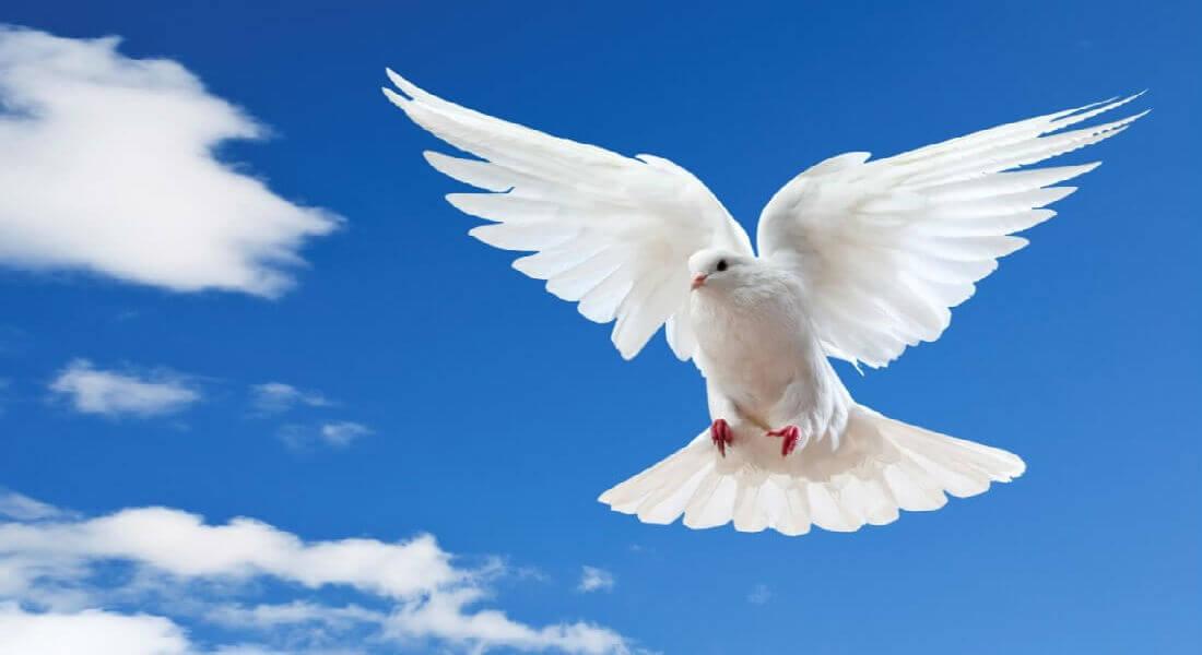 Православные верующие отмечают Духов день