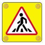 Программа «Правила пешехода»