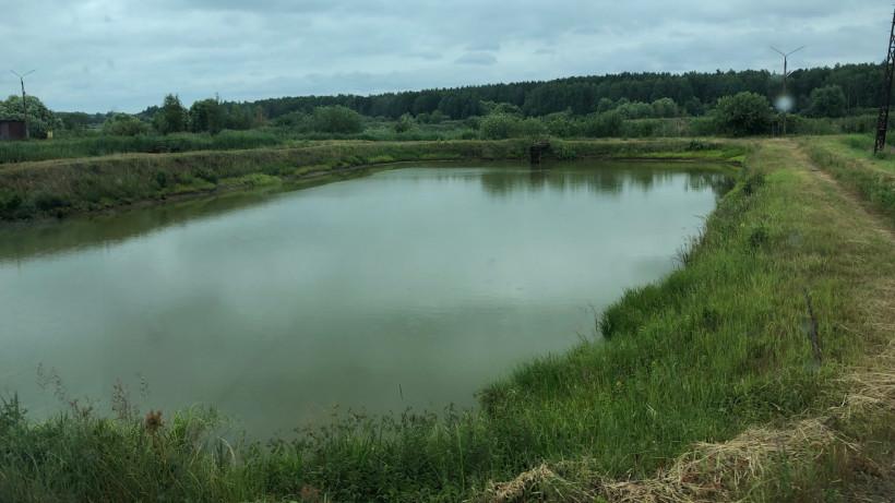 Сезон выращивания товарной рыбы стартовал в Егорьевском рыбном комбинате