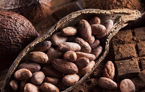 Шоколад продлевает жизни и помогает похудеть – ученые