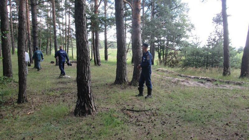 Спасатели вывели из лесов с начала года 100 заблудившихся