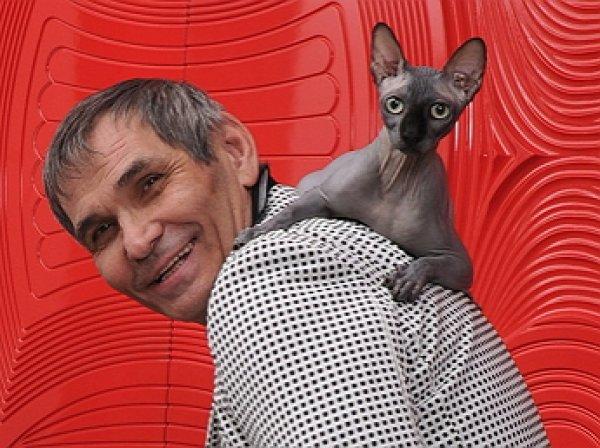 Стала известна судьба сбежавшего кота Алибасова, заработавшего $150 тыс за два дня