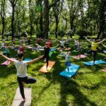 В Московской области стартует Фестиваль йоги