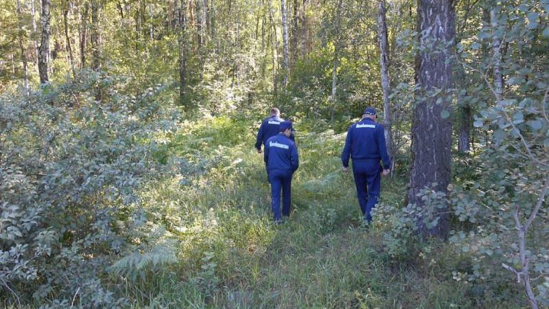 Всероссийский форум добровольных поисково-спасательных отрядов открылся в Московской области