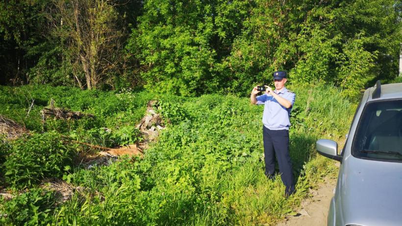 Более 400 нарушений чистоты устранили в Щелкове с начала года