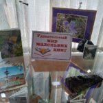 Книжно-предметная выставка «Удивительный мир маленьких книг»