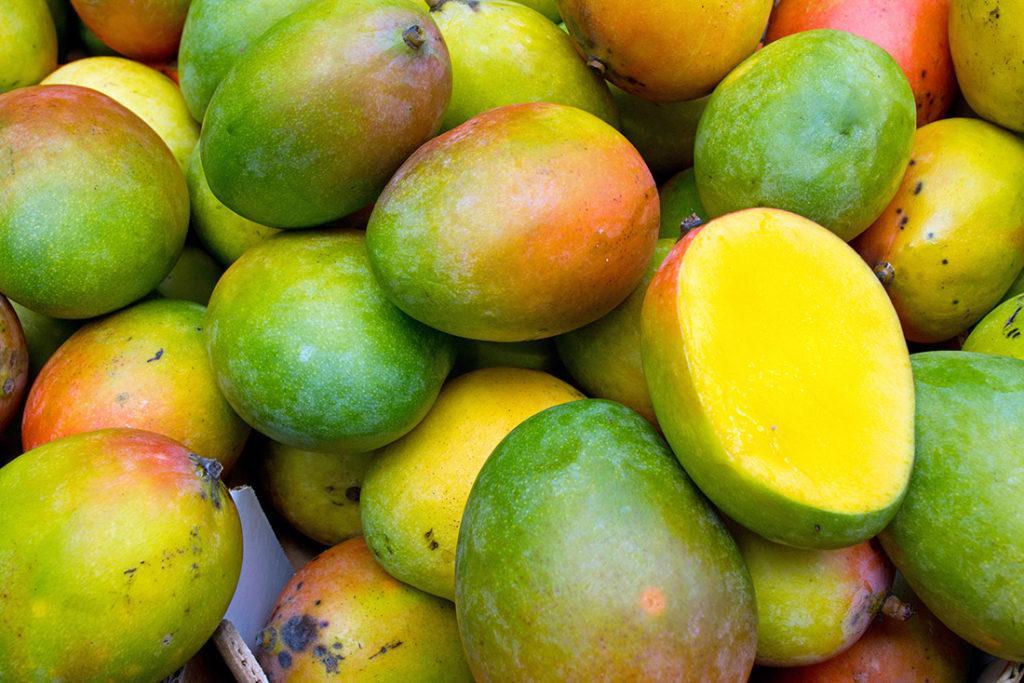 Сертификация манго: правила и особенности процедуры
