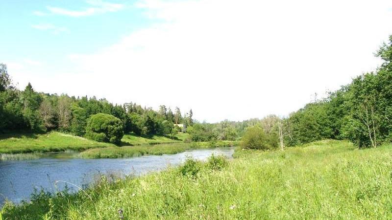Минэкологии наложило штраф на богородское предприятие за ограничение доступа к реке