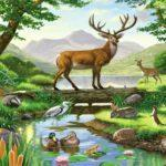 Познавательная программа «Как в лесу себя вести, как природу охранять, как самым верным другом стать!»
