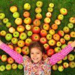 Программа «Катись, яблочко…»
