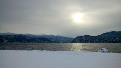 Фридайвер Энтони Уильямс из Новой Зеландии совершил самое глубокое погружение под лед, с задержкой дыхания в ластах и гидрокостюме.
