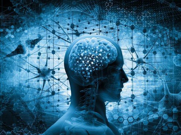 Ученый опубликовал самый короткий IQ-тест в мире