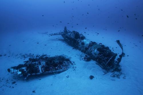 Одноместный палубный истребитель времён Второй мировой войны Чанс-Воут F4U «Корсар», который разбился в 1948 году на Гавайях. Только пилот был на борту в момент аварии. Сейчас самолет является искусственным рифом.