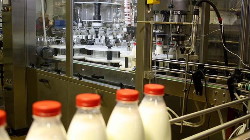 Завод по производству заменителей грудного молока построят в Можайском городском округе