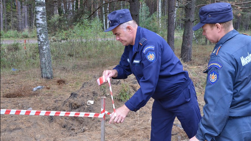 Более 420 снарядов времен Великой Отечественной войны обезвредили в Подмосковье в 2019 году