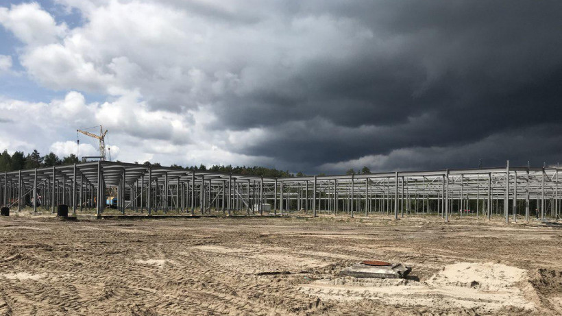 Грибная ферма появится в Электростали в 2020 году