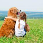 Игровая познавательная программа «Животные–друзья человека»