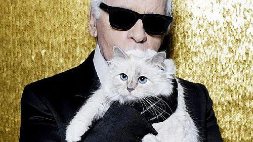 Бирманская кошка по имени Шупетт, принадлежавшая Карлу Лагерфельду – одно из самых счастливых домашних животных в мире. У нее две персональных служанки, и, помимо немалого наследства, доставшегося ей от знаменитого модельера, Шупетт сама заработала несколько миллионов евро на рекламе.