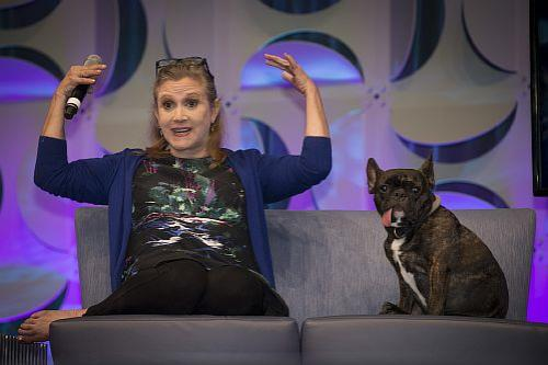 Собака актрисы Кэрри Фишер по кличке Гэри Фишер присутствовала на съемках фильма «Звёздные войны: Последние джедаи». По словам свидетелей, уши Гэри каждый раз поднимались, когда хозяйка появлялась на экране.