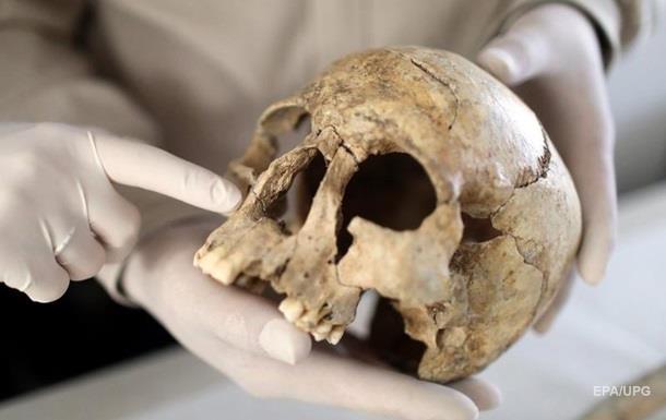 Найдены останки, поставившие под сомнение процесс эволюции
