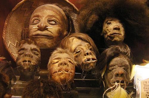 Человеческая голова Это только кажется, что человеческие головы уже несколько сотен лет не в моде, а «охотников за скальпами» можно увидеть лишь в фильмах. В 2006 году сотрудники службы безопасности аэропорта американского города Форт-Лодердейл штата Флорида были неприятно удивлены, обнаружив в багаже 30-летней жительницы Гаити Мерлин Сивир человеческую голову. Причем почти в первозданном виде — с зубами, остатками кожи и волос. Женщина сообщила, что приобрела артефакт, чтобы отгонять злых духов. Духи ей помогли или то, что она признала свою вину, но вместо обвинения в контрабанде, за которое туристке грозило до 15 лет тюрьмы, женщине инкриминировали ненадлежащее хранение человеческих останков. А это уже до года лишения свободы.