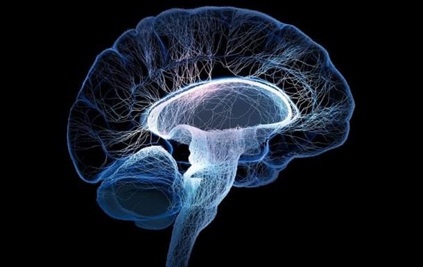 Ученые нашли способ борьбы с неизлечимым заболеванием мозга