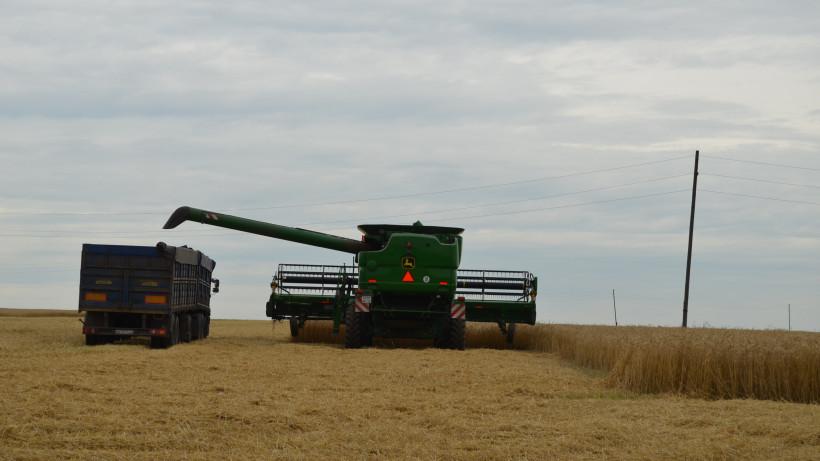 Уже 25% сельхозземель с зерновыми культурами убрали в Подмосковье