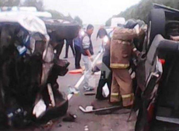 В жутком ДТП под Рязанью погибли семь человек (ВИДЕО)
