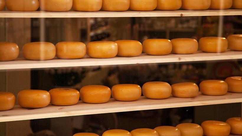 Завод по производству сыров построят в Наро-Фоминском округе в 2020 году